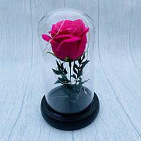 Роза в колбе с led подсветкой 19 см