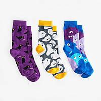 Детские носки Dodo Socks Babaiko 4-6 лет, набор 3 пары