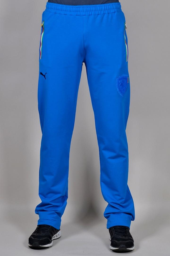 Спортивные брюки Puma (290-1)