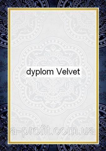 Галерея бумаги, Диплом 170 гр, уп/25 Velvet