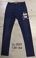 Лосины с имитацией джинсы для девочек Sincere оптом, 134-164 pp. Артикул: LL2631
