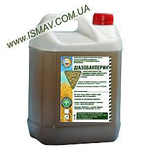 Биопрепарат Диазобактерин для злаковых трав