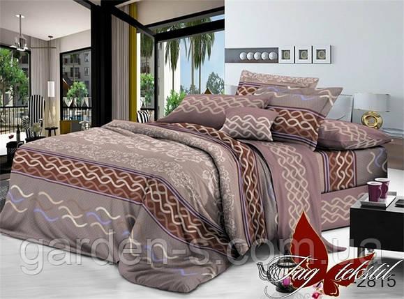 Комплект постельного белья TM TAG XHY2815, фото 2