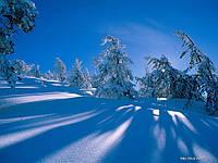 Карпаты. Отдых в Карпатах. Катание на лыжах. Буковель Драгобрат 2015. Экскурсия в Карпаты