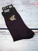 Шкарпетки чоловічі H&M бордові з тигром розмір 40-42 (високі)