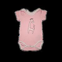 Бодік з коротким рукавом для дівчинки 68-86