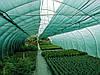 Затеняющая сетка купить 60% затенения зелёная 8м х 5м (Китай)