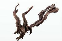 Декорация деревянная коряга IKEBANA, 20-30 см