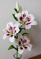 Лилии из флористической глины (холодного фарфора)