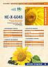 Семена подсолнечника НС-Х-6043