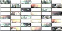 Плитка ПВХ Регул Одуванчик 0,4х477х957мм