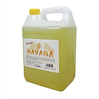 Шампунь HAVANA 5 л, для всех типов волос