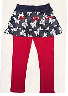 Лосины+юбка для девочек на меховой подкладке  F&D, 3-8 рр. арт. 9229, фото 1