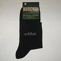 Мужские носки Житомир - 6.25 грн./пара (Elite)