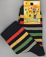 Детские носки демисезонные х/б Смалий, 33-35, 22 размер                                             , фото 2