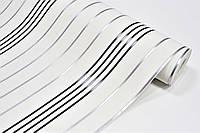 Обои виниловые на бумажной основе ArtGrand Bravo 85025BR20