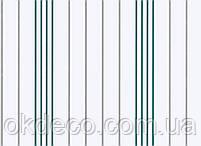 Обои виниловые на бумажной основе ArtGrand Bravo 85025BR25, фото 2