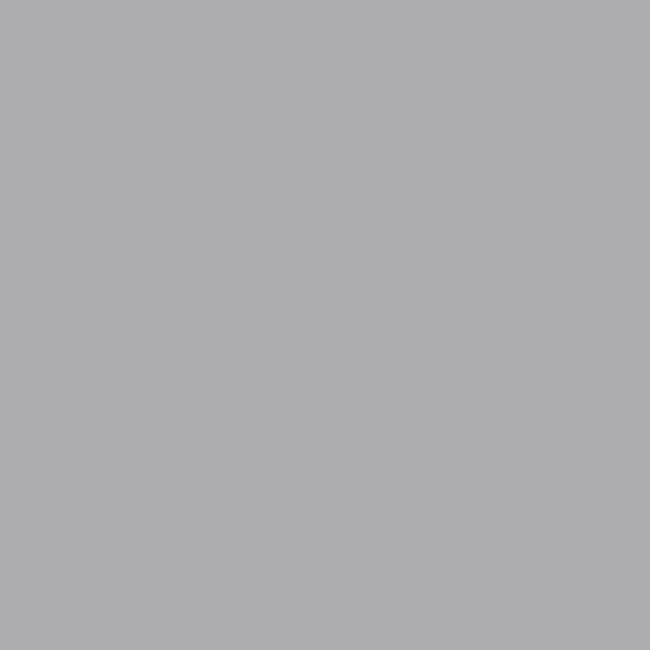 Плитка облицовочная Paradyz Ceramica Gamma Szary Sciana Mat 19,8X19,8