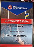 Поршневая группа Т-25, Д-21, фото 2