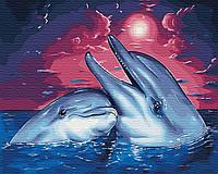 Картина по номерам Дельфины (40 х 50 см)