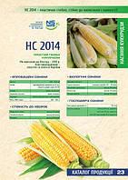 Семена кукурузы НС 2014