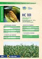 Семена кукурузы НС 101