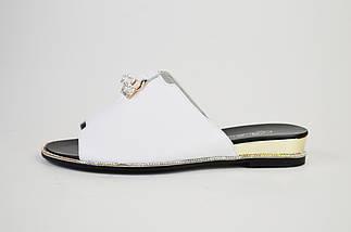 Шлепанцы кожаные Berkonty 18165 Белые, фото 2