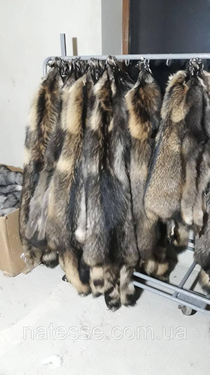 Енот финский шкуры мех натуральный цвет (Польша), 80 см от ушей.