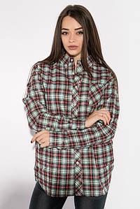 Рубашка 276V002-1 цвет Коричнево-зеленый