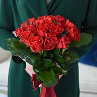 Букет 19 красных роз Эль торо, фото 1