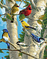 Картина по номерам Яркие птицы (40 х 50 см)