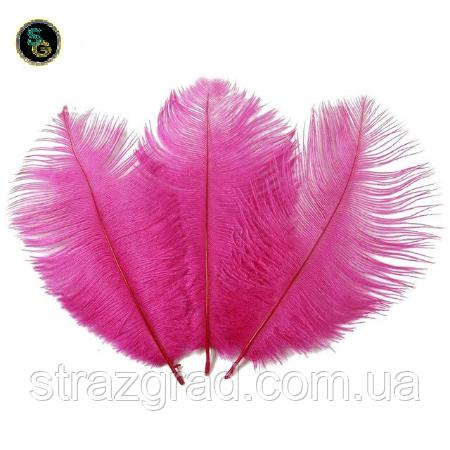Перья страуса Декоративное перо Фуксия 18-25см