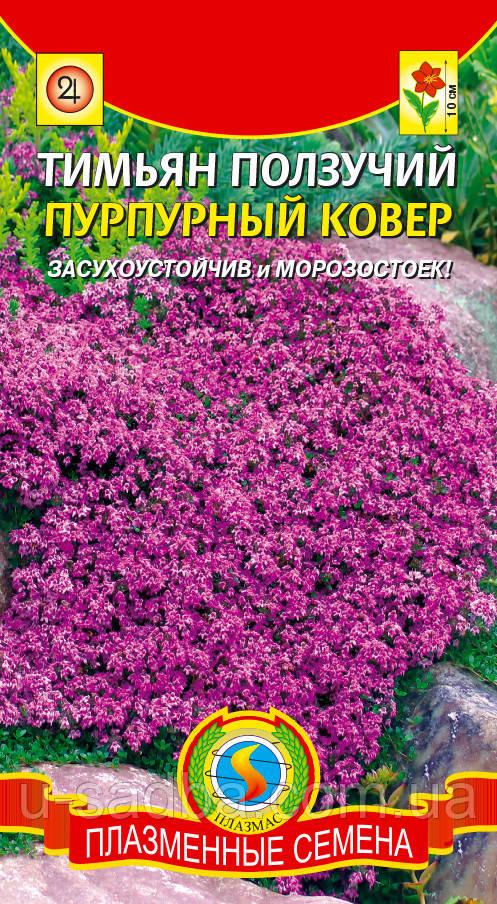 Семена цветов  Тимьян ползучий Пурпурный ковер 0,05 г пурпурные (Плазменные семена)