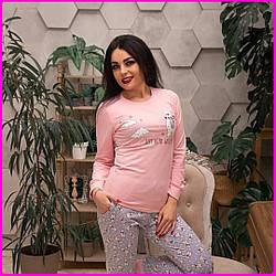 Женская пижама хлопковая (розовая).4108. Размер: M (последний)