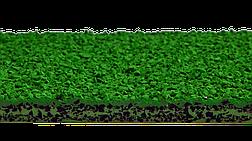 EPUFLOOR BM / TETRAPUR ENZ III, фото 2