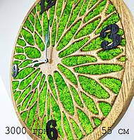 Часы настенные деревянные с мхом  диаметр 55 см, фото 1