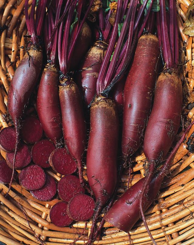Семена сортовой свеклы Атаман 2 грамм