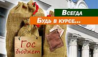 В следующем году бюджет страны планируют пополнить на 20-30 млрд грн