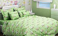 Комплект Сови на салатовому в дитячу ліжечко/садок з гумкою і без, бязь