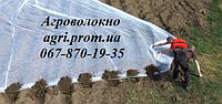 Агроволокно Агротекс 23 г/м2 (1,6м*200м)