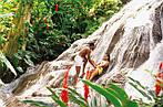 Отдых на Ямайке (Карибские острова) из Днепра / туры на Ямайку из Днепра, фото 5