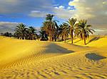Отдых в Тунисе из Днепра / туры в Тунис из Днепра, фото 4