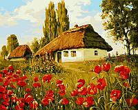 Картина по номерам 40×50 см. Маков цвет Художник Геннадий Колесной, фото 1
