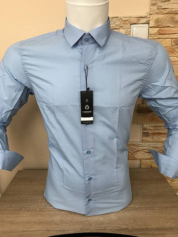 Однотонна сорочка Fiorenzo slim (ґудзик), фото 2