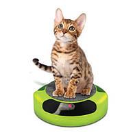 Интерактивная игрушка для кошек Catch the Mouse, фото 1
