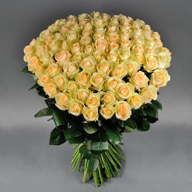 101 персиковая роза Аваландж