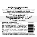 Альгекс ТОП (концентрат) препарат для очистки от водорослей Kerex 816, 5 л, Венгрия, фото 2