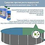 Альгекс ТОП (концентрат) препарат для очистки от водорослей Kerex 816, 5 л, Венгрия, фото 3