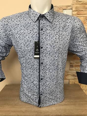 Рубашка Fiorenzo, фото 2