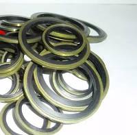 Армированные уплотнительные кольца гидравлические, фото 1